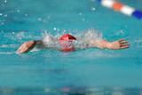 gala swimmer poster