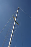 looking up at the mast of a yacht