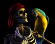 skeleton pirate portrait