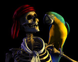 skeleton pirate portrait-