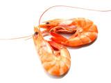 two shrimps