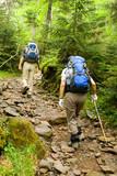 Fototapety hikers
