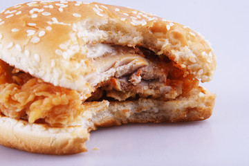 bitten burger