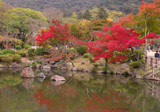 japanese fall pond poster