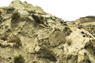 desert scene 2