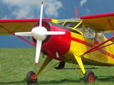 highwing airplane poster