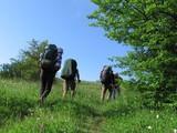 trekking poster