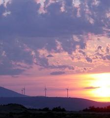 éoliennes au soleil couchant