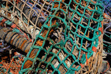 tangled fishing nets 2 poster
