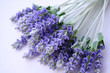 lavender lying on table