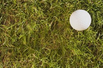 golfball14