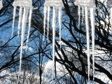 sparkling icicles poster