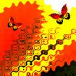 popart butterfly