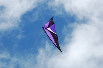 flight of a kite
