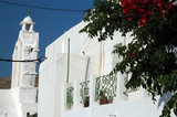 greek architecture with flowers poster