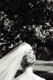 bun with veil