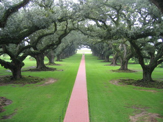 plantation en louisiane