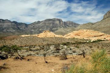 red rock desert scenes 8