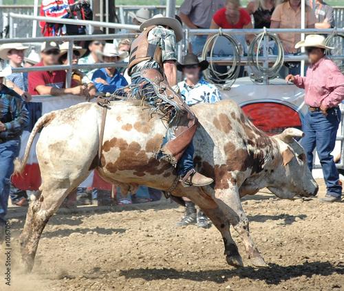 Staande foto Stierenvechten cowboy & bull