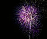 bright purple fireworks poster
