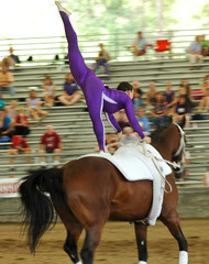 horse vaulter performing