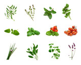 herb collection poster