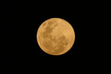 yellow moon