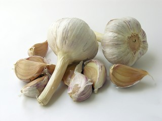early garlic