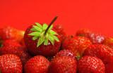die königin der erdbeeren poster