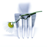 fork and flower - Fine Art prints