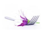 Fototapety fork and flower
