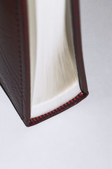 Edge of Book