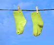 babysocks drying in the sun