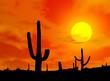 Leinwanddruck Bild - des_kaktus
