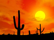 Leinwandbild Motiv des_kaktus