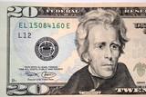 american twenty dollar, andrew jackson poster