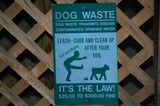 funny dog sign poster