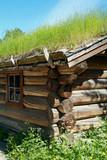 detail of old log-cabin poster