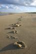 empreintes de pas sur le sable