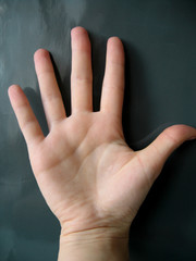 the hand on gray background.