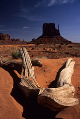 east mitten butte of monument valley