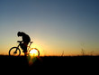 biker girl silhouette