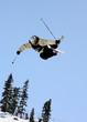 ski jumping mute grab