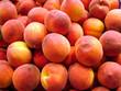 peach background - 1075553