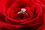 engagement ring in red rose poster