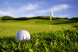 canvas print picture - golfball on course