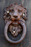 giant lion knocker