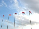 five singapore flags in a row poster