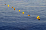 yellow sea buoys poster