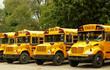 school buses - 1089998